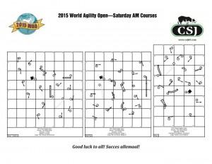 2015WAO-Saturday-AM-Courses