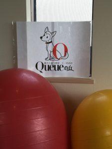 Hamamatsu-Queue-oka